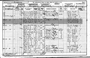 Census 1901.SMYTH
