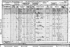 Census 1901.Steele