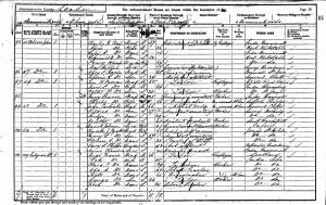 Census 1901.Wyatt