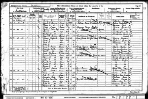 Census 1901.Young