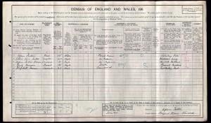 Census 1911.Agnes Fulton