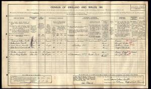Census 1911.Castle