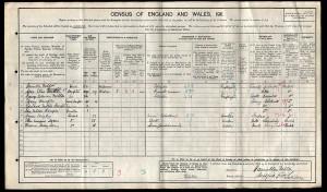 Census 1911.George Fulton