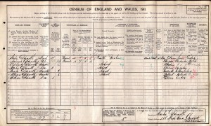Census 1911.Goldsmith