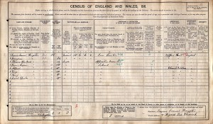 Census 1911.Kingston (1)