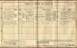 Census 1911.Morgan