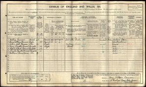Census 1911.Norman AE