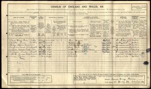 Census 1911.Paines