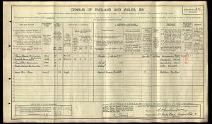 Census 1911.Rowlandson