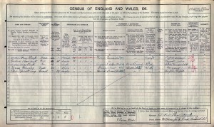 Census 1911.SMYTH