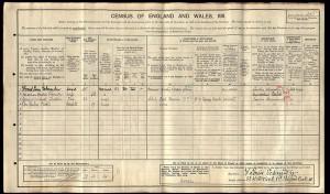 Census 1911.Schneider
