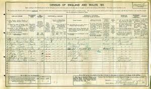 Census 1911.Squire