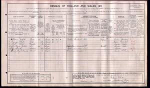 Census 1911.White